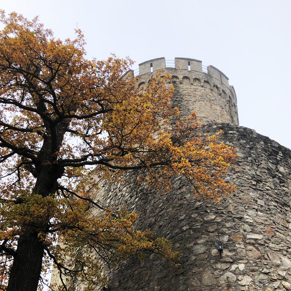 kreativ-fee_Alsbacher-Schloss_Aussenansicht